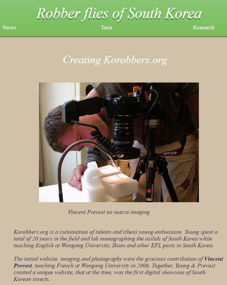 Prise de vue macrophotographique, mission pour le site d'entomologie Korobbers.og, Corée du Sud
