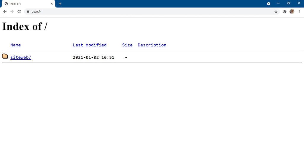 Exemple d'un site Internet professionnel avec un problème de connexion