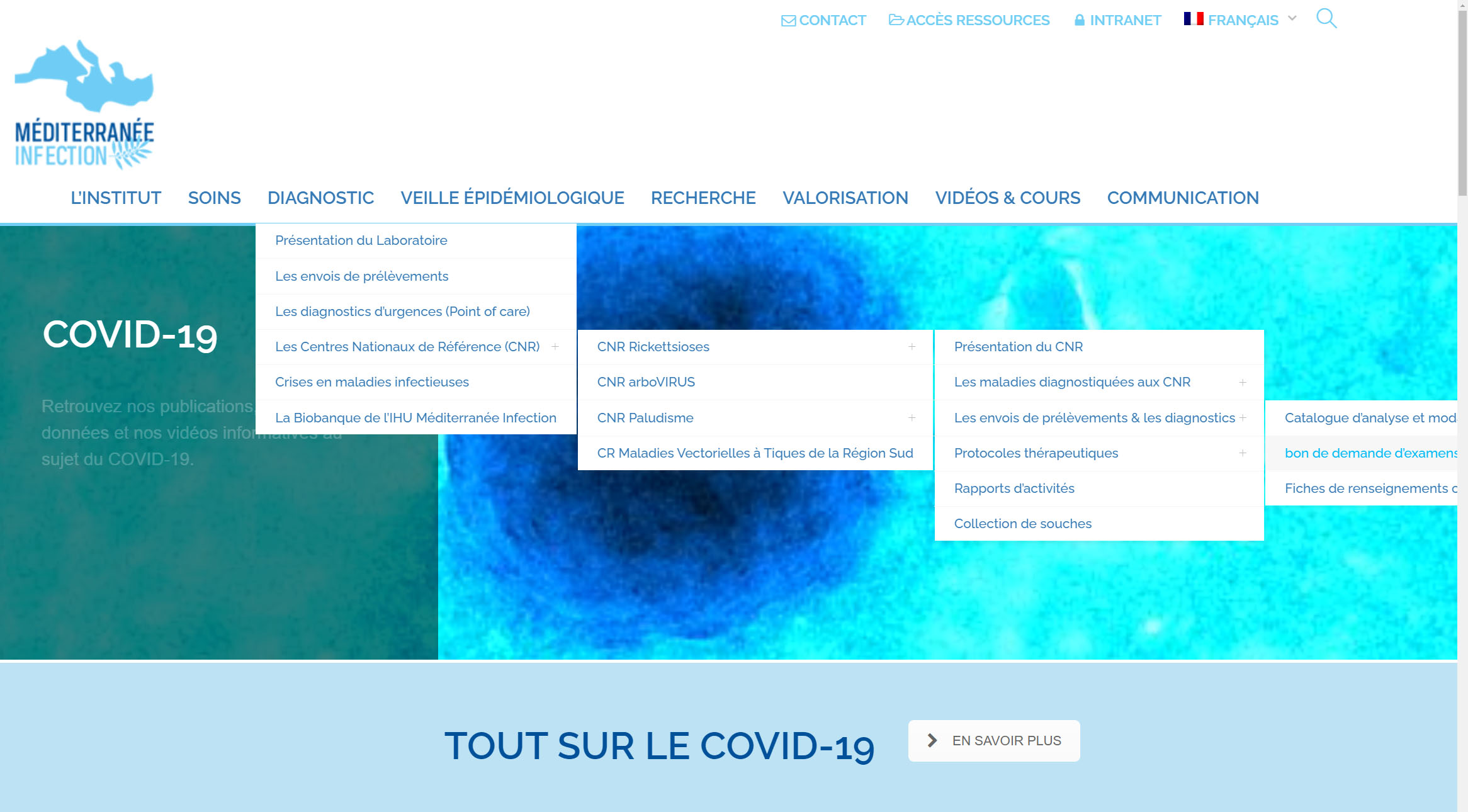 Exemple d'un site Internet professionnel avec un problème Flashplayer