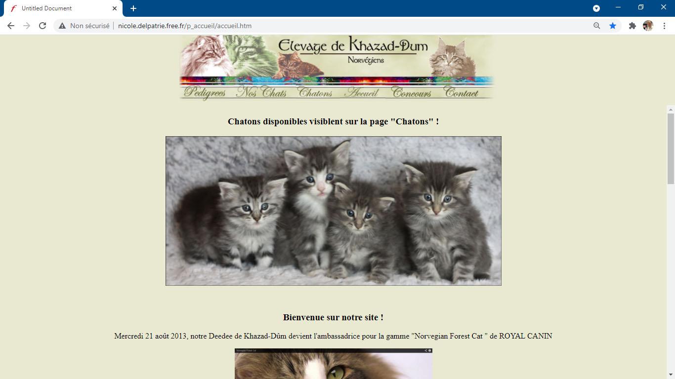 Exemple d'un site Internet professionnel au design désuet